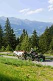 Fiaker Gruber auf dem Weg ins Kötschachtal um in das Restaurant Alpenhaus Prossau zu fahren